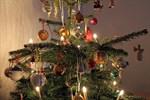 Weihnachtsbaum-Entsorgung erfolgt ab 8. Januar 2018