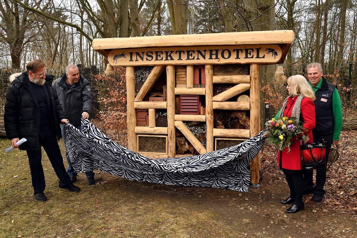 insektenhotel im zoo rostock eingeweiht rostock heute. Black Bedroom Furniture Sets. Home Design Ideas