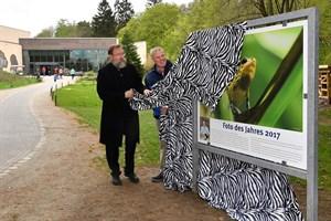 Zoodirektor Udo Nagel enthüllt gemeinsam mit dem Sieger Dittmar Brandt das Foto des Jahres 2017 (Foto: Joachim Kloock)