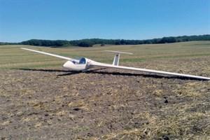Segelflugzeug landet auf Acker nahe der A19 (Foto: Polizei)