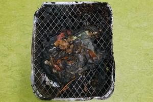 Brandstiftung in Diedrichshagen - Unbekannte grillen in Küstenwald