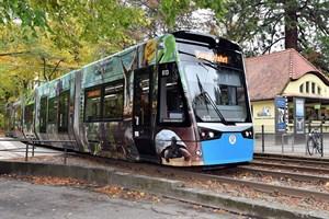 Die neue Zoo-Bahn ist ab morgen im Linienverkehr unterwegs. (Foto: Zoo Rostock/Kloock)