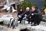Nordwasser übernimmt Patenschaft für Pinguine im Zoo