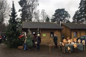 Der Weihnachtsbaumverkauf des Stadtforstamtes in der Rostock Heide startet am 6. Dezember 2018 (Foto: Roger Kähler)