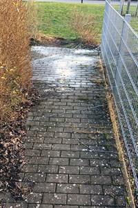 Gefährliche Falle - Drahtseil über Fußweg gespannt (Foto: Polizeiinspektion Rostock)