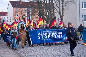 AfD-Demo in Rostock-Reutershagen