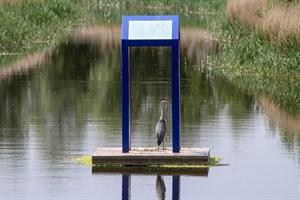 Besucherrekord im IGA Park Rostock (Foto: Archiv)