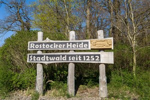 Waldbrandgefahrenstufe 4 ab morgen in Rostock