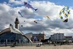 Stromfest und Drachenfest 2019 in Warnemünde