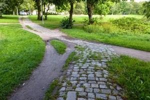 Kringelgrabenpark in der Südstadt erhält neue Wege (Foto: Amt für Stadtgrün, Naturschutz und Landschaftspflege)