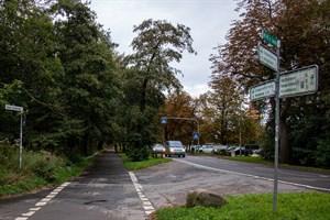 Entlang des Küstenwalds in Warnemünde sollen Fuß- und Radweg getrennt werden, dafür müssen Bäume gefällt werden