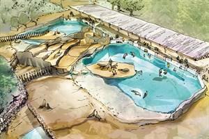 So könnte die neue Robbenanlage im Zoo Rostock aussehen (Entwurf aus der Projektstudie, Quelle: Zoo Rostock)