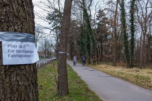 Das Amt für Verkehrsanlagen hält an seiner Planung für den Radweg in der Parkstraße Warnemünde fest - bis Ende Februar sollen die Bäume am Rand des Küstenwalds gefällt werden (Foto: Archiv)