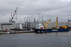 Zwei mobile Hafenkräne sind Ende Januar beim Verladen im Rostocker Überseehafen ins Hafenbecken gestürzt (Foto: Archiv)