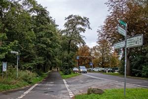 Der Radweg in der Parkstraße am Küstenwald Warnemünde beschäftigt erneut den Ortsbeirat (Foto: Archiv)