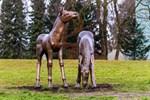 Bronzene Fohlen am Schwanenteich aufgestellt