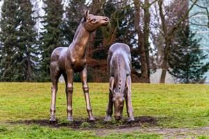 Bronzenes Fohlenpaar von Gerhard Rommel am Schwanenteich in Reutershagen
