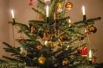 Weihnachtsbaum-Entsorgung erfolgt ab 4. Januar 2021