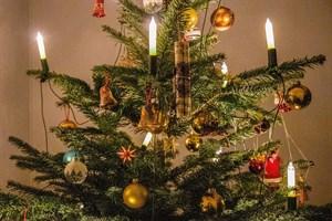 Die Weihnachtsbaum-Entsorgung findet in Rostock ab dem 4. Januar 2021 statt