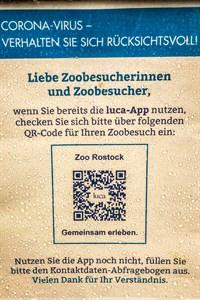 Einfach mal in den Rostocker Zoo? Fake-Check-Ins in Geschäften und Freizeiteinrichtungen können zum Problem bei der Corona-Nachverfolgung mit Luca werden