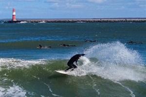 Wellenreiten im Seekanal Rostock - Surfer suchten in Warnemünde nach der perfekten Welle