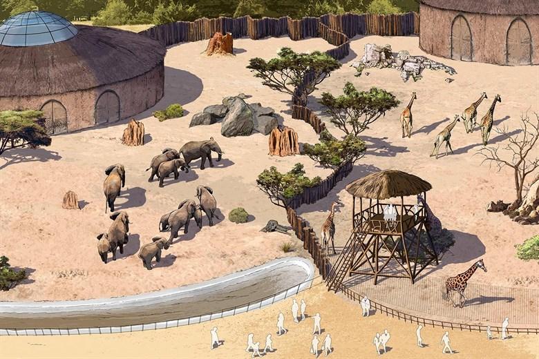 Afrikaneum und Wikingerdorf - Zukunftsideen für den Zoo Rostock