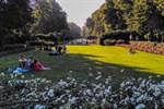 Rosengarten - Freiflächengestaltung vorgestellt