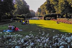 Rosengarten Rostock - Freiflächengestaltung vorgestellt